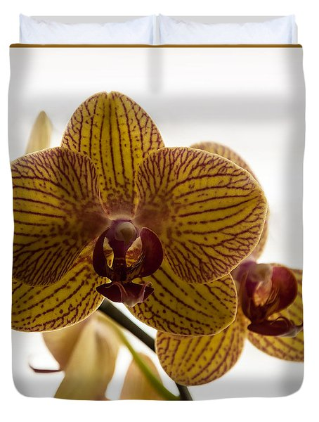 Red Veined Orchid Duvet Cover by Kirt Tisdale