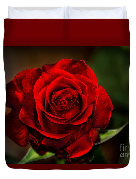 Red Velvet Duvet Cover by Brenda Bostic