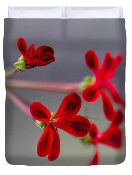 Duvet Cover featuring the photograph Red Velvet by Clare Bambers