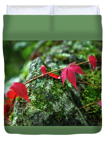 Duvet Cover featuring the photograph Red Vine by Bill Pevlor