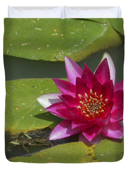 Red Water Lily Duvet Cover by Linda Geiger