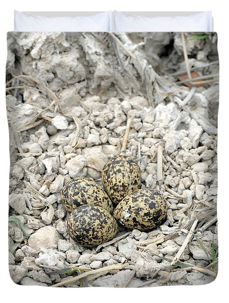 Red-wattled Lapwing Nest Duvet Cover