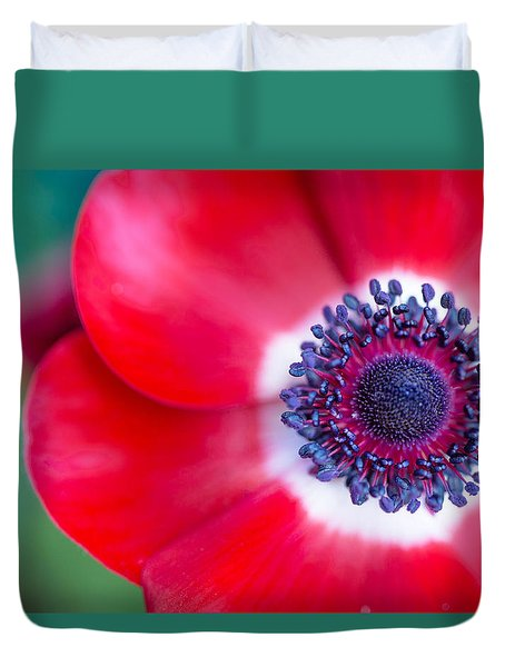 Red White Blue Anemone Duvet Cover by Rebecca Cozart