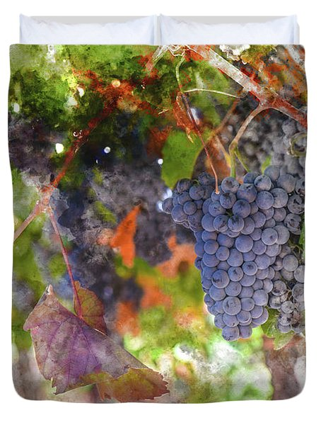 Red Wine Grapes On The Vine In Wine Country Duvet Cover