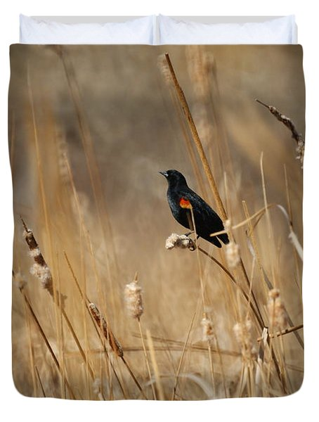 Red Winged Blackbird Duvet Cover by Ernie Echols