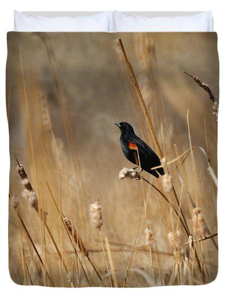 Red Winged Blackbird Duvet Cover by Ernie Echols