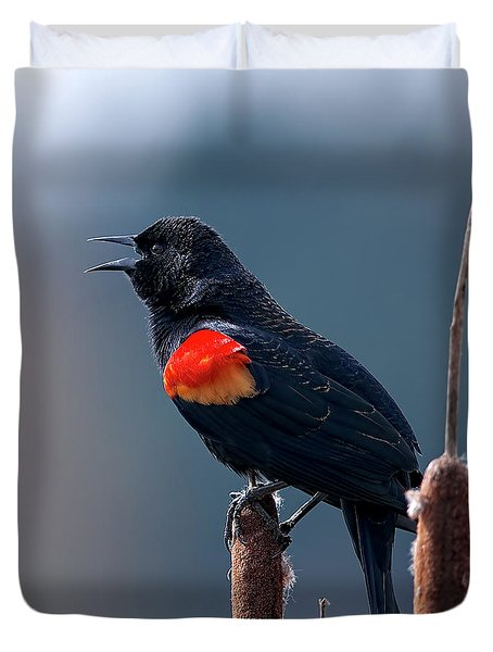 Duvet Cover featuring the photograph Red-winged Blackbird Singing by Sharon Talson