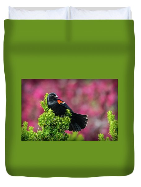 Red Winged Blackbird With Crabapple Blossoms Duvet Cover