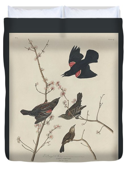 Red-winged Starling Duvet Cover by Anton Oreshkin