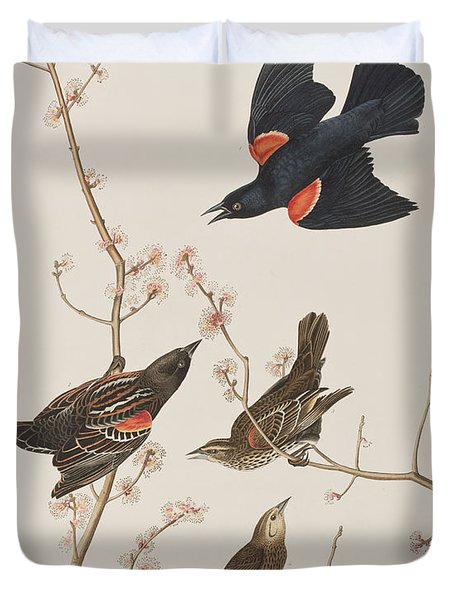Red Winged Starling Or Marsh Blackbird Duvet Cover
