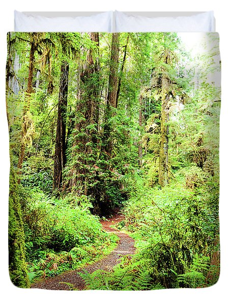 Red Woods Trail Duvet Cover