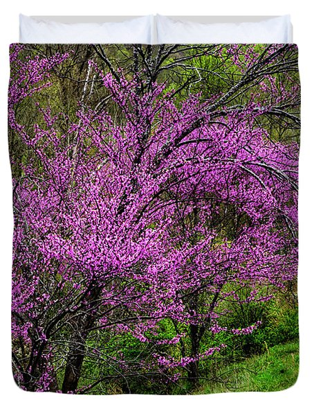 Redbud And Path Duvet Cover