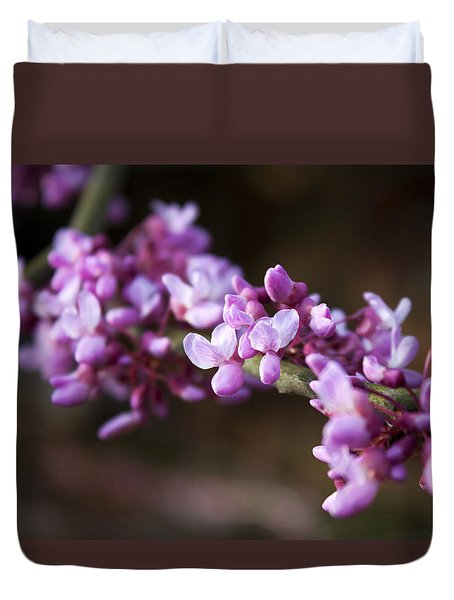 Duvet Cover featuring the photograph Redbuds In March by Jeff Severson