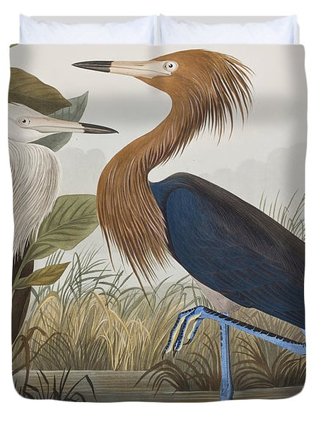 Reddish Egret Duvet Cover by John James Audubon
