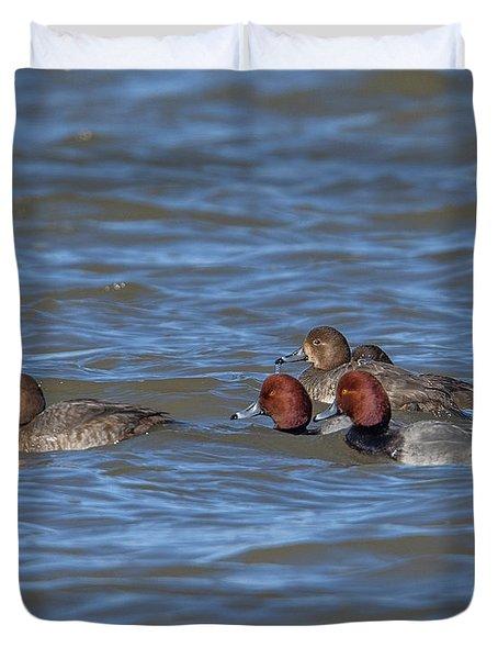 Redhead Ducks Dwf0136 Duvet Cover