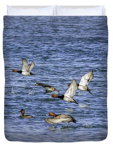 Redhead Ducks In Flight Duvet Cover