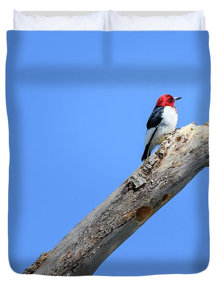 Redheaded Woodpecker On A Dead Tree Duvet Cover