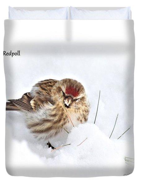 Redpoll Duvet Cover