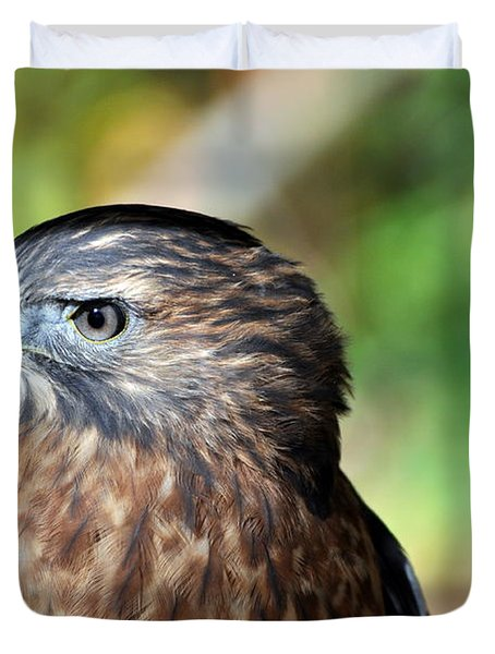 Redtail Duvet Cover by Marty Koch