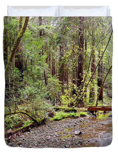 Redwood Creek Flowing Through Muir Woods National Monument - Mill Valley Marin County California Duvet Cover