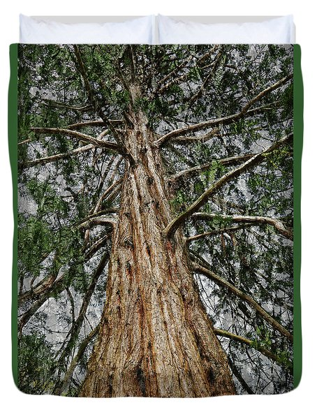 Redwood Reaches For The Sky Duvet Cover