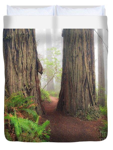 Redwood Trail Duvet Cover