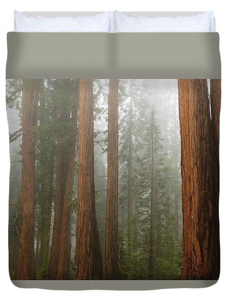 Redwood Trees In Fog Duvet Cover