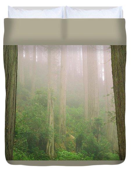 Redwoods Fog Duvet Cover