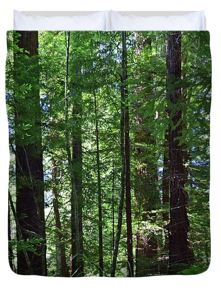 Redwoods No. 3-1 Duvet Cover