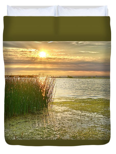 Reeds In The Sunset Duvet Cover