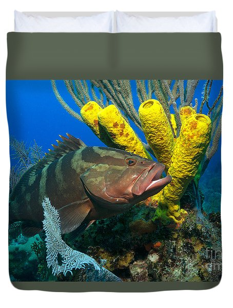 Reef Denizon Duvet Cover