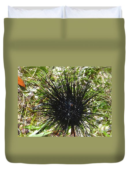 Reef Life - Sea Urchin 1 Duvet Cover