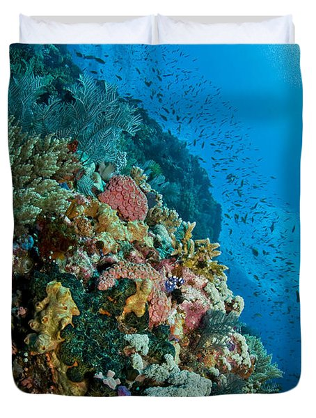 Reef Scene With Corals And Fish Duvet Cover by Mathieu Meur