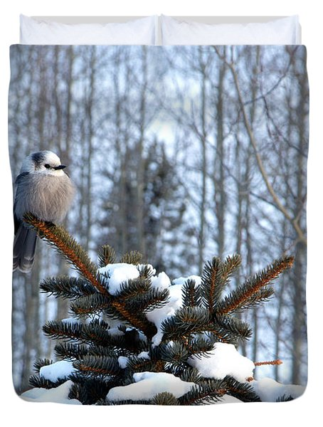 Refined Little Gray Jay In Colorado Duvet Cover by Carol M Highsmith