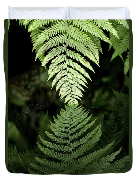 Reflected Ferns Duvet Cover