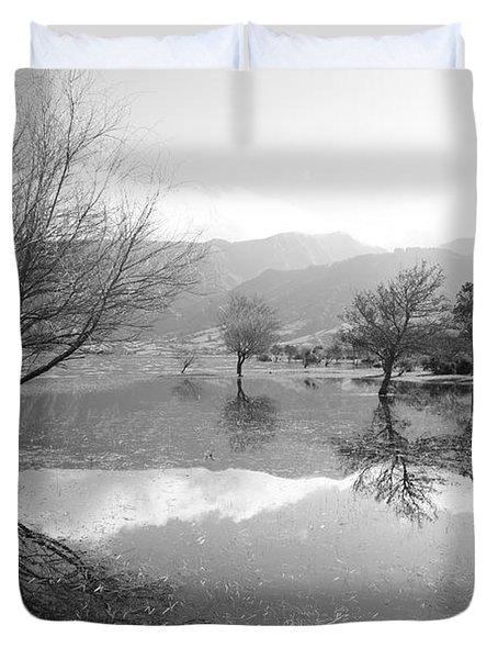 Reflected Trees Duvet Cover by Gaspar Avila