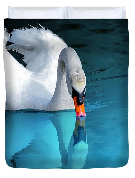Reflection Perfection Duvet Cover by Brian Stevens