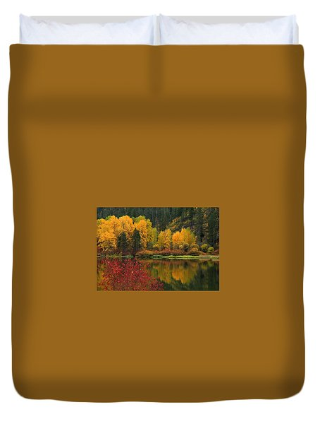 Reflections Of Fall Beauty Duvet Cover by Lynn Hopwood