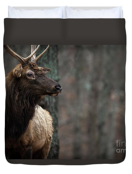 Duvet Cover featuring the photograph Regal by Andrea Silies