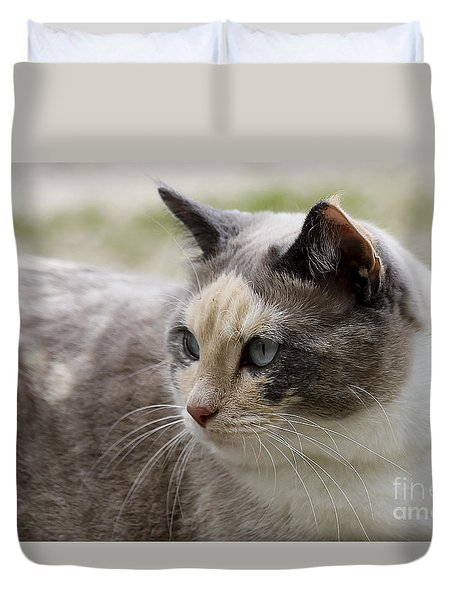 Duvet Cover featuring the photograph Relaxed by Teresa Zieba