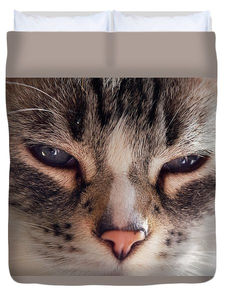 Remi Cat Duvet Cover