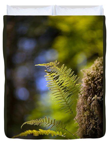 Renewal Ferns Duvet Cover by Mike Reid