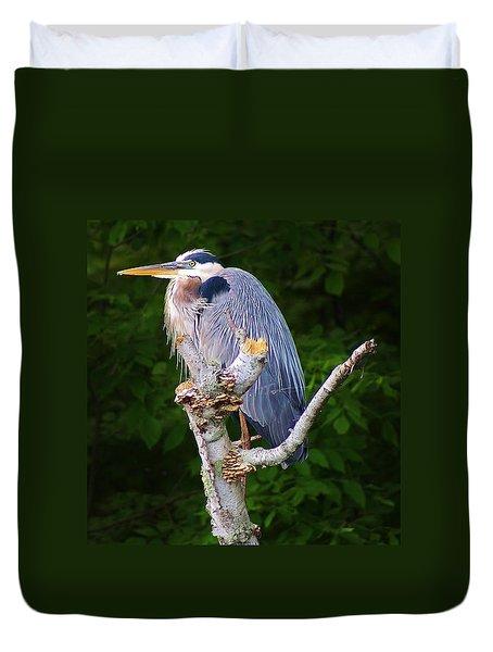 Resting Blue Heron Duvet Cover