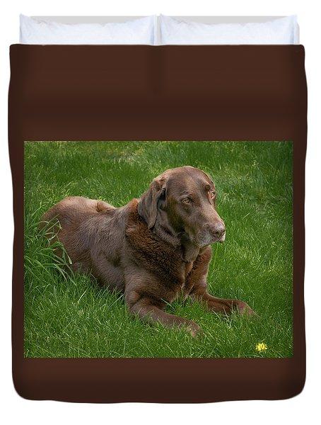 Resting Chocolate Duvet Cover