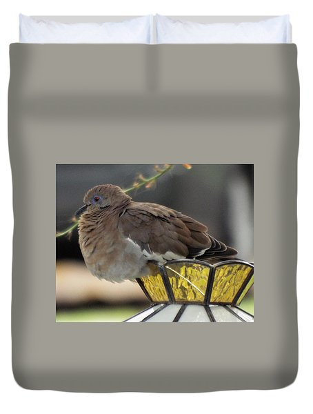 Resting Dove Duvet Cover