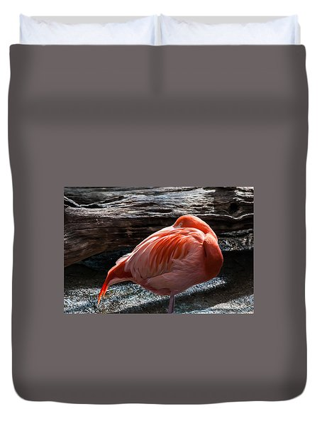 Resting Flamingo 8331 Duvet Cover by G L Sarti