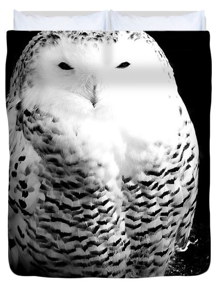 Resting Snowy Owl Duvet Cover by Darcy Michaelchuk