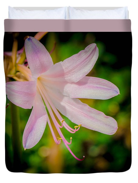 Resurrection Lily Or Magic Lily Duvet Cover