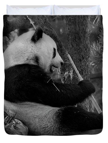 Revel In Bamboo Duvet Cover