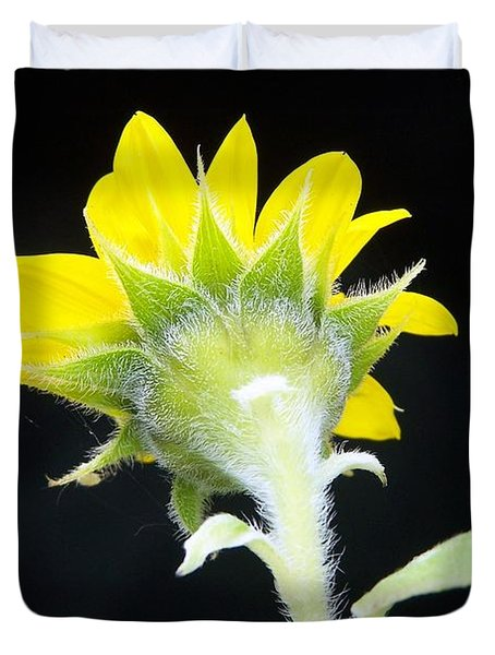 Duvet Cover featuring the photograph Reverse Sunflower by Richard Ricci